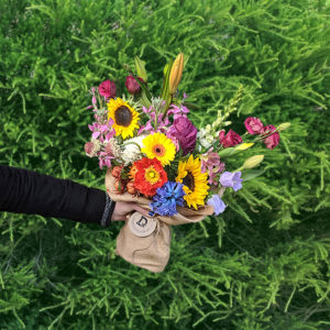 Colourful bouquet of 10 stems of flowers