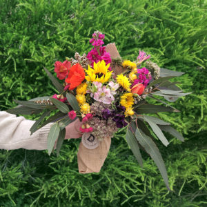 Ten wild, colourful stems of flowers in a bouquet