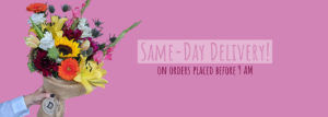 Same-Day Delivery on orders placed before 9 AM