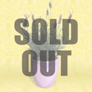 lavender is sold out