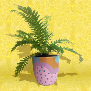 Fern plant in colourful, patterned pot