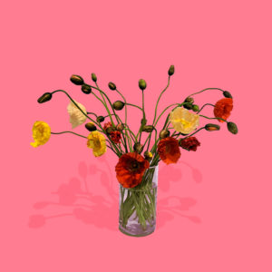 glass vase filled with poppies